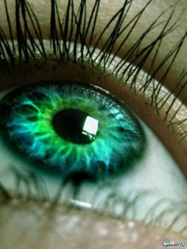 Пилотимол капли глазные - инструкция, цена, отзывы