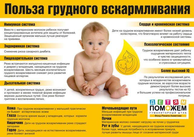 Цистит у кормящей мамы – как лечить лекарствами и народными средствами