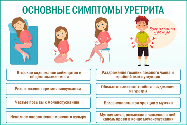 Лечение неспецифического уретрита у мужчин и женщин современными методами